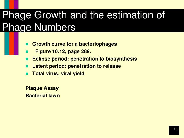 Phage Growth and the estimation of Phage Numbers