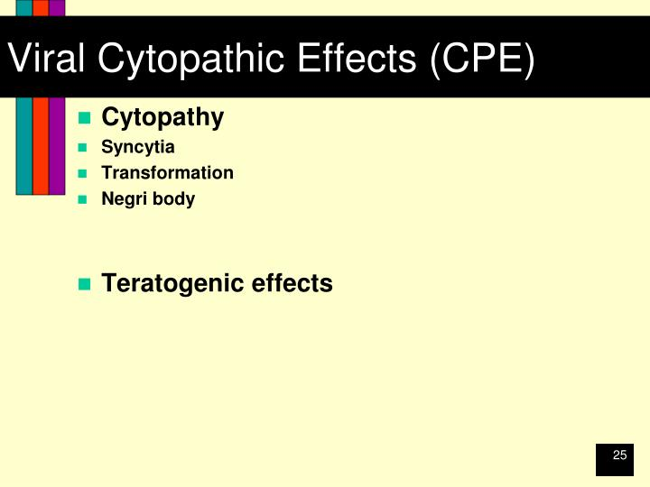 Viral Cytopathic Effects (CPE)