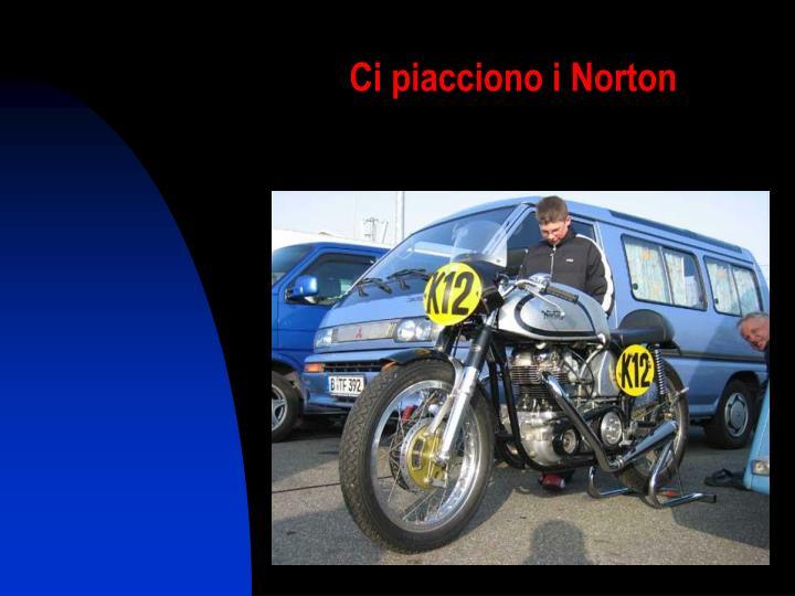 Ci piacciono i Norton