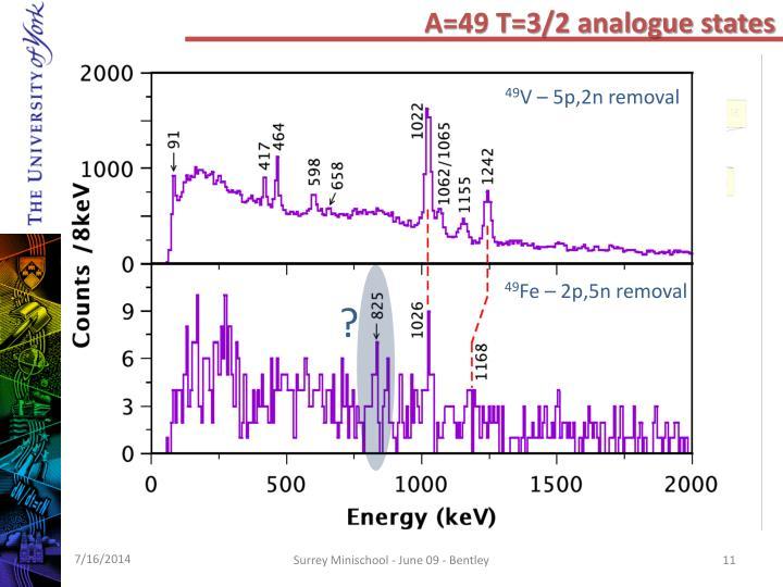A=49 T=3/2 analogue states