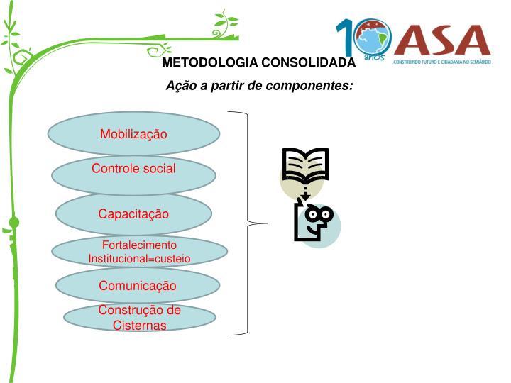 METODOLOGIA CONSOLIDADA