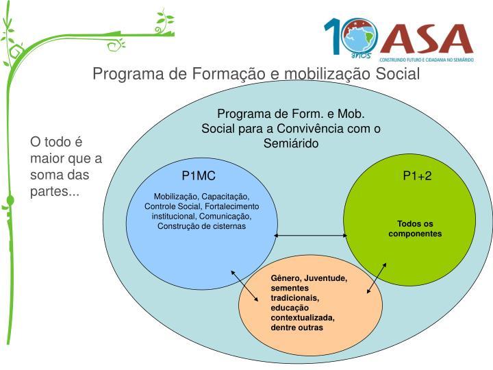 Programa de Formação e mobilização Social