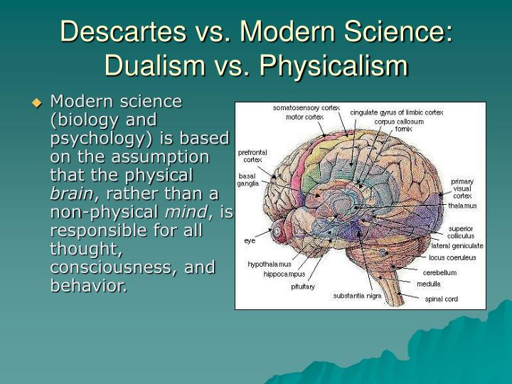 Descartes vs. Modern Science: Dualism vs. Physicalism
