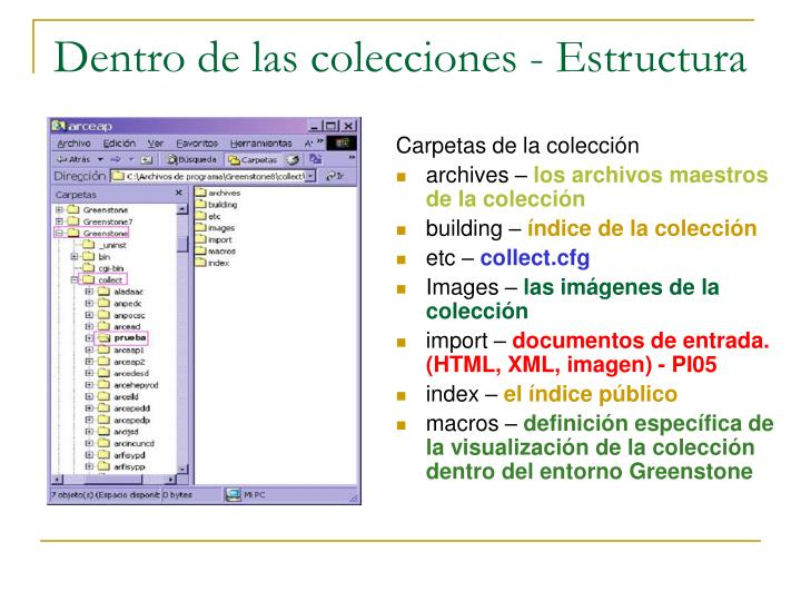 Dentro de las colecciones - Estructura