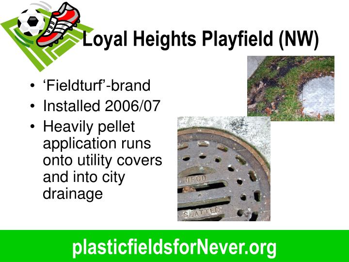 Loyal Heights Playfield (NW)
