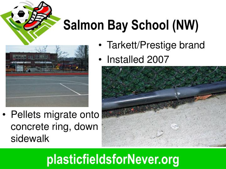 Salmon Bay School (NW)