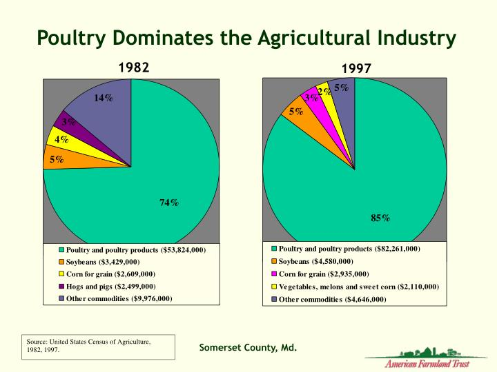Poultry Dominates the Agricultural Industry
