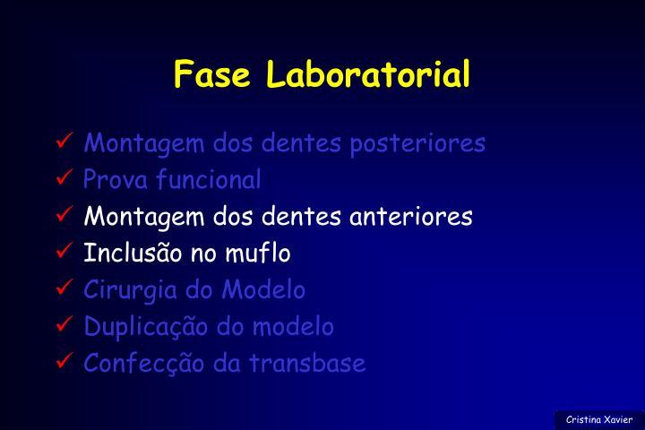 Fase Laboratorial