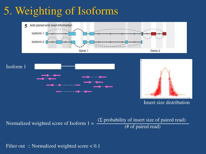 5. Weighting of Isoforms