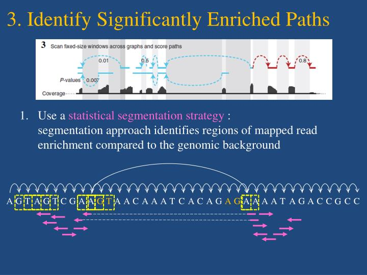 3. Identify Significantly Enriched Paths