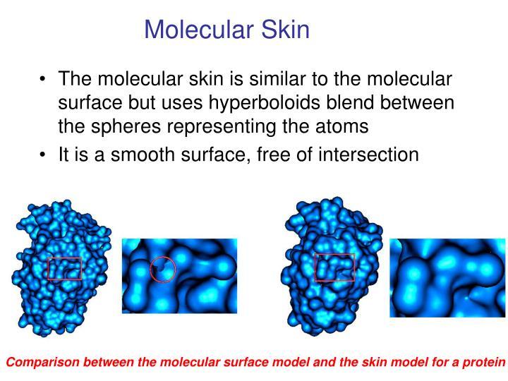 Molecular Skin
