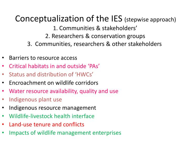 Conceptualization of the IES
