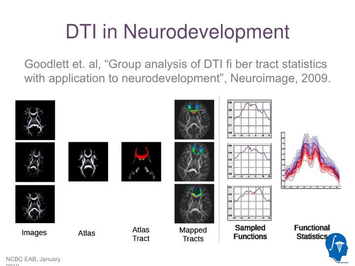 DTI in Neurodevelopment