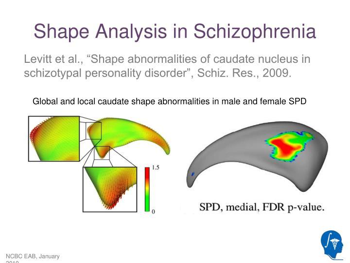 Shape Analysis in Schizophrenia