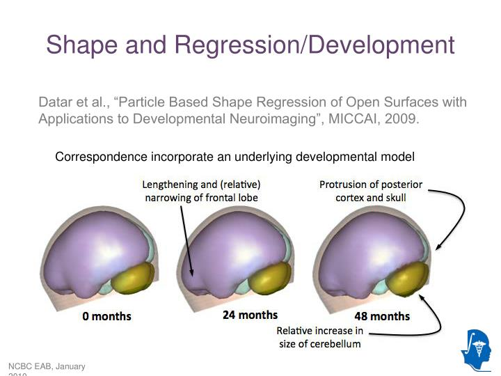 Shape and Regression/Development