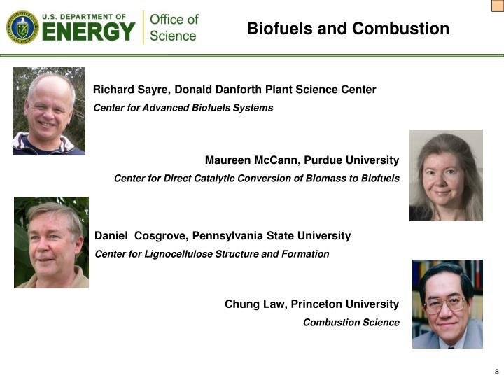 Biofuels and Combustion