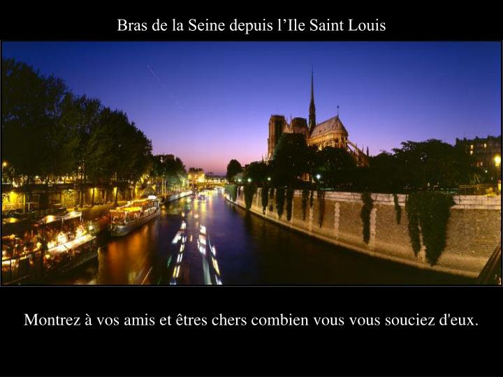 Bras de la Seine depuis l'Ile Saint Louis