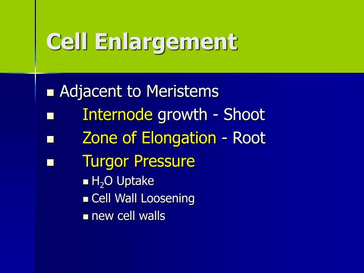 Cell Enlargement