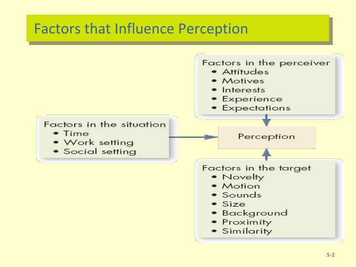 Factors that influence perception