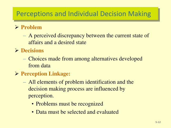 Perceptions and Individual Decision Making