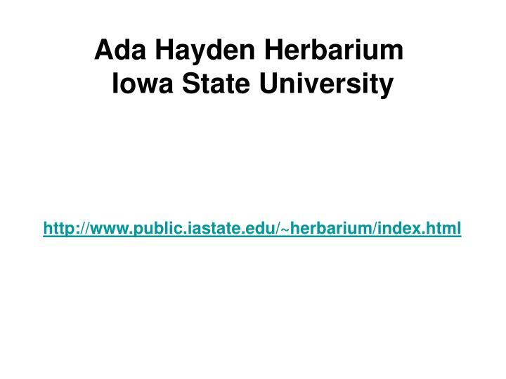 Ada Hayden Herbarium