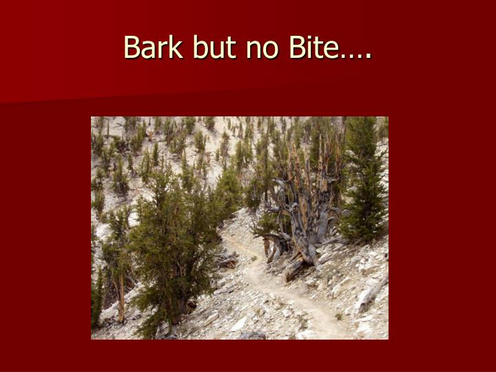 Bark but no Bite….