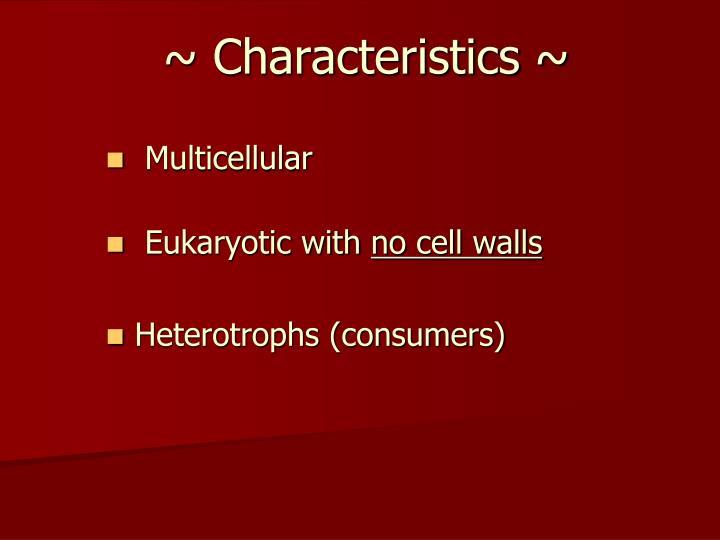 ~ Characteristics ~