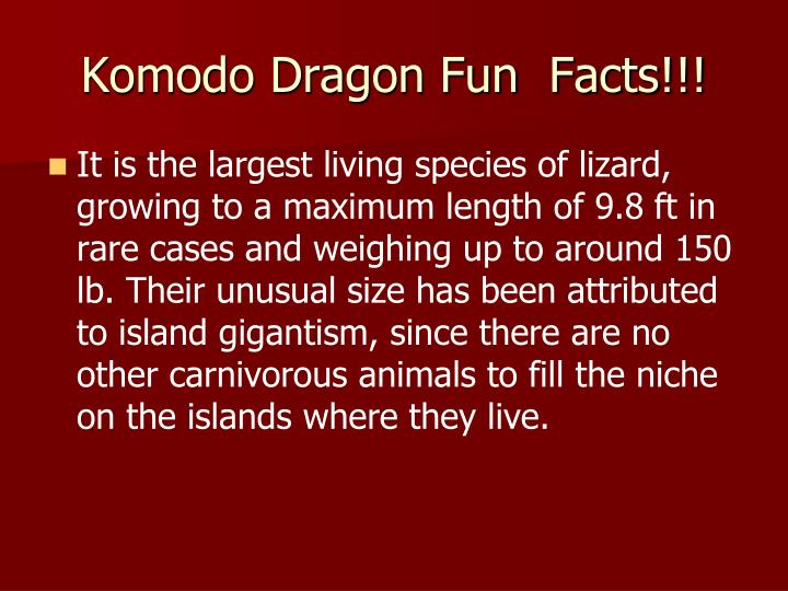 Komodo Dragon Fun  Facts!!!