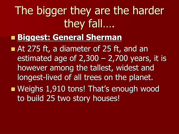 The bigger they are the harder they fall….