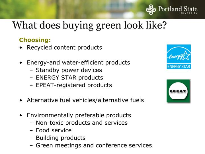 What does buying green look like?