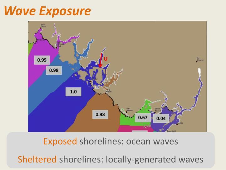 Wave Exposure