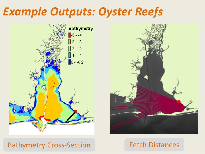 Example Outputs: Oyster Reefs