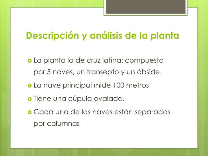 Descripción y análisis de la planta