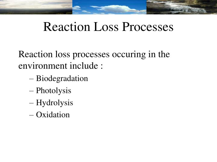 Reaction Loss Processes