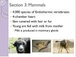 section 3 mammals