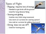 types of flight