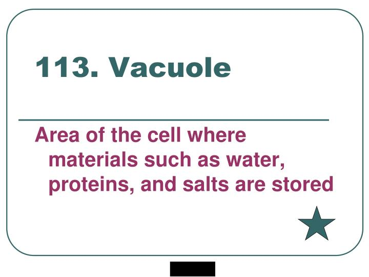 113. Vacuole