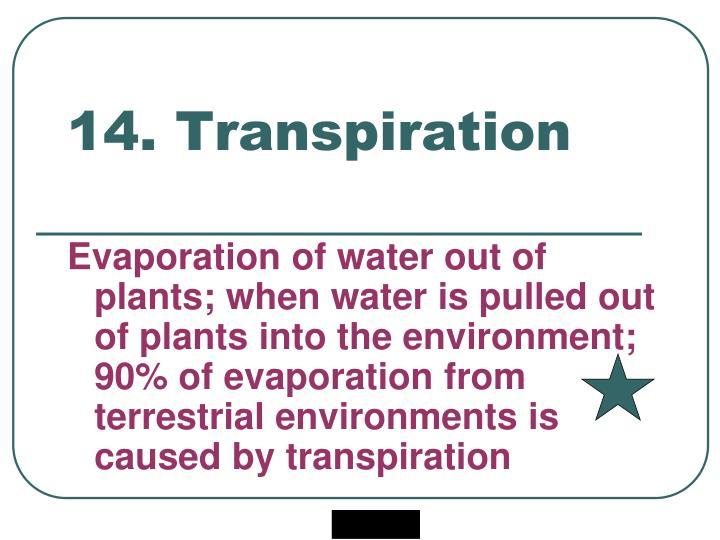 14. Transpiration