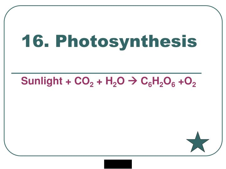 16. Photosynthesis