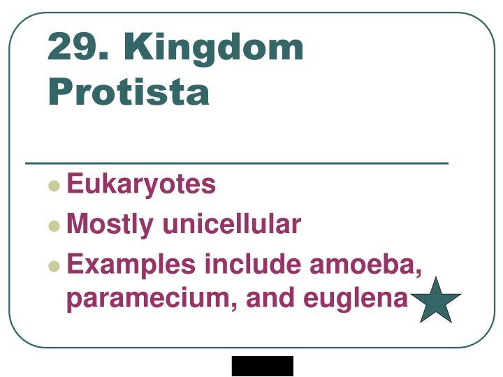 29. Kingdom Protista