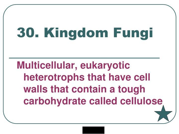 30. Kingdom Fungi
