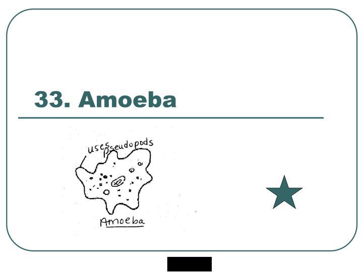 33. Amoeba