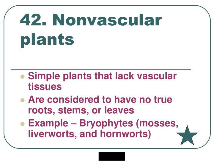 42. Nonvascular plants