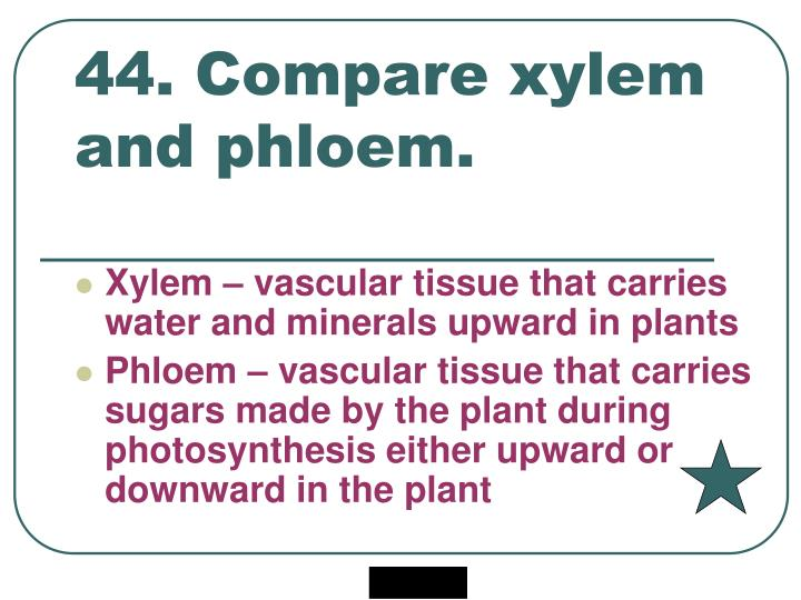 44. Compare xylem and phloem.