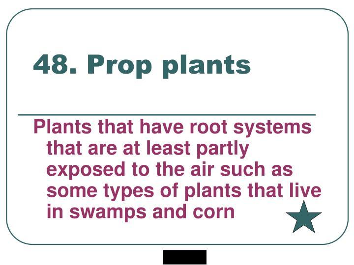 48. Prop plants