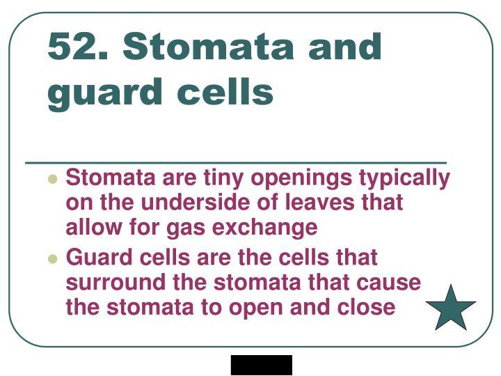 52. Stomata and guard cells