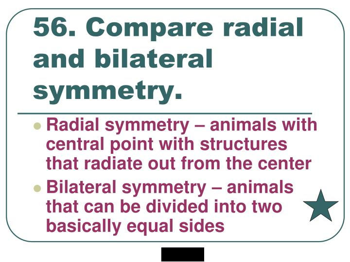 56. Compare radial and bilateral symmetry.