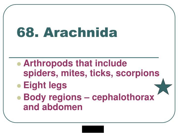 68. Arachnida