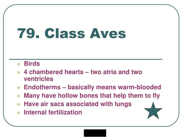 79. Class Aves