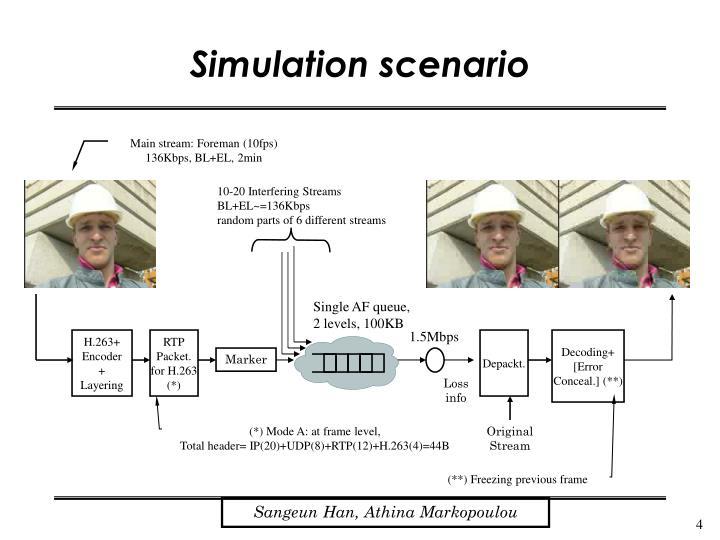 Simulation scenario